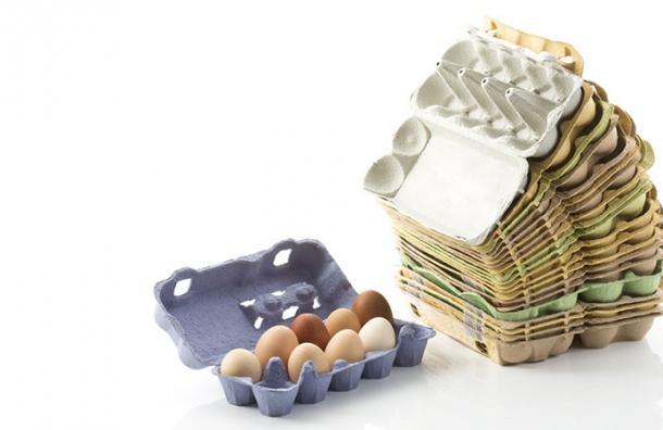 Después de ver esto, no volverás a botar el cartón de los huevos nunca más
