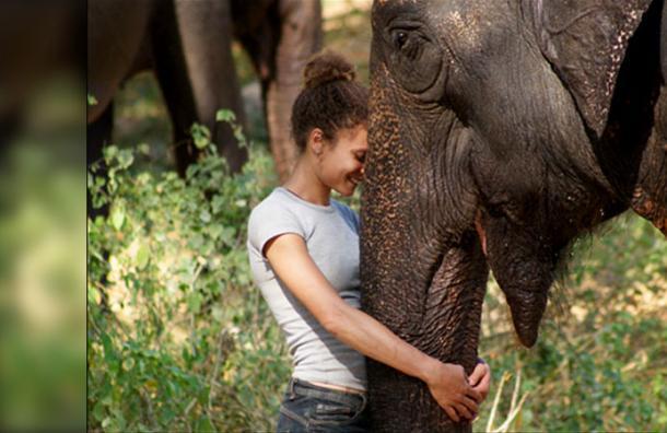 Estos 6 voluntariados te permiten viajar por el mundo y ayudar a salvar a los animales