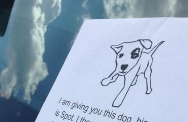Este tierno perrito esconde una certera queja contra un conductor mal estacionado